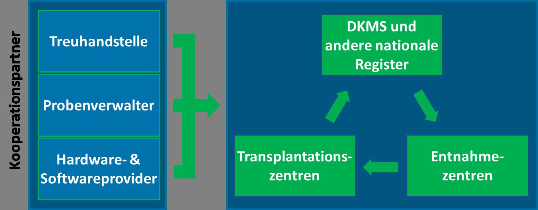 Grafik Kooperationspartner deutsch